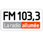 FM 103-3